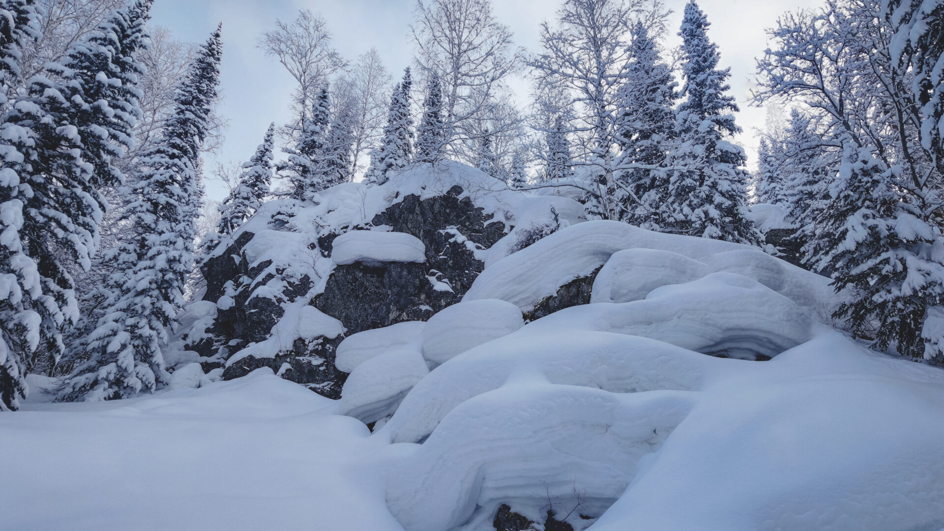 Ridder Ski touring Camp